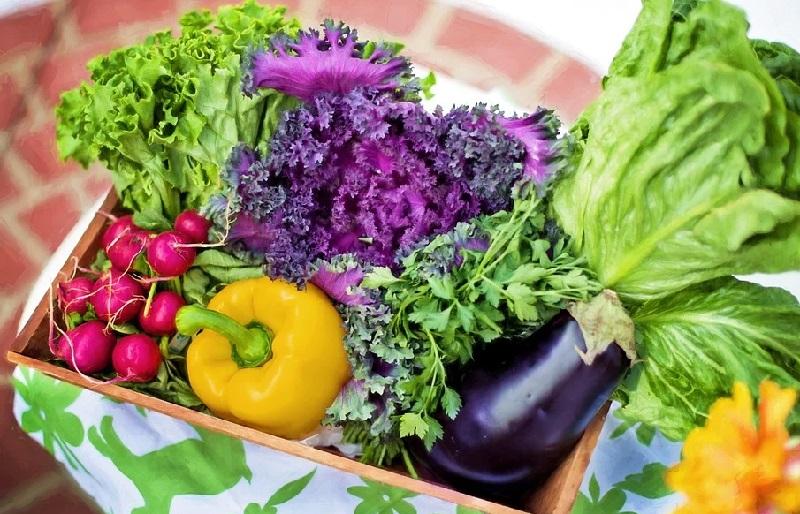 Vitamin-reich und gesund ernähren